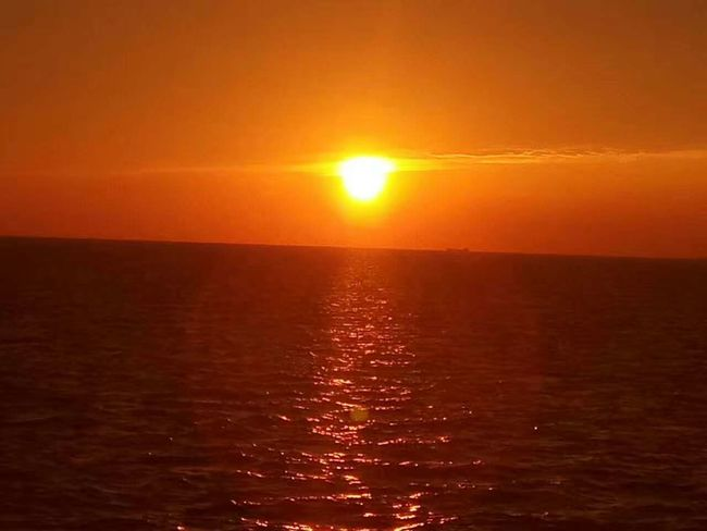 Sunset Sea Sun Beauty In Nature Orange Color Horizon Over Water Sunlight Sky Edenmandom Hanging Out Taking Photos Mobile Phone Photography Nubia Z11 Black Gold Mobile Phone Zhoushan Zhejiang,China