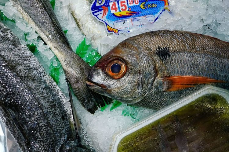 Market Food Seafood Healthy Eating Ice Madrid SPAIN Mercado Fish Animal Food And Drink Close-up For Sale Animal Themes Raw Food Retail  Outdoors Wellbeing Fishing Industry No People Freshness
