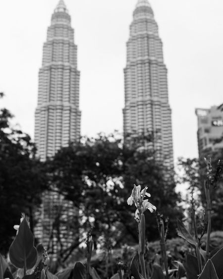 City Skyscraper Architecture Low Angle View Built Structure Outdoors Building Exterior TowerTravel Destinations Day Growth ModernNo People Sky Tree Nature Urban Skyline Kuala Lumpur Malaysia  KLCC Twin Towers