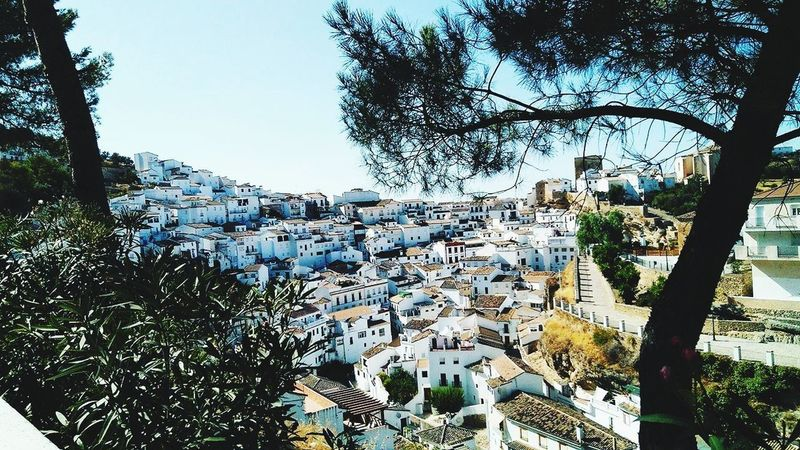 Day Architecture Outdoors Andalucía SPAIN Andalucía Nature Andalucia Spain White Whitehouse White Color Whitebuilding Whitebuildings