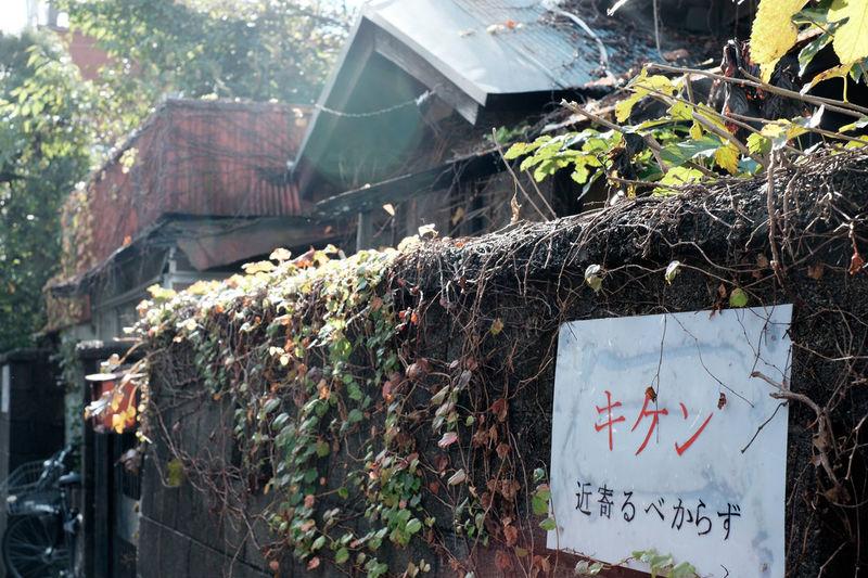 Collapse Collapsing Danger Dangerous Fujifilm Fujifilm X-E2 Fujifilm_xseries Walking Wall きけん スナップ 街歩き