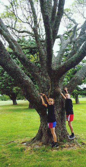 Tree Togetherness Two People Child Bonding FreshonEyeem EyeEmNewHere Kids Being Kids Kids Playing Children Photography Twins Boystyle Brotherhood