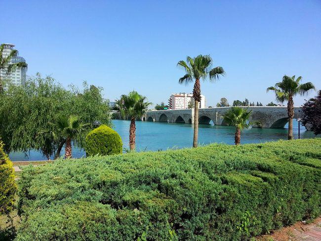 Traveling Relax Adana Starting A Trip Taş Köprü Seyhan River In Adana Nature Peace Goodshot