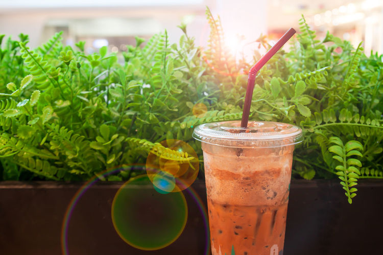 Traditional Thai Milk Tea with iced Food And Drink Drink Drinking Straw Straw Refreshment Glass Green Color Leaf Drinking Glass Freshness Household Equipment Food Herb Focus On Foreground Close-up Table Cold Temperature Cold Drink No People Non-alcoholic Beverage Thai Food Milk Tea