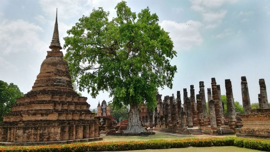 Ruins Religion Place Of Worship Architecture Cultures Spirituality Ancient History Travel Travel Destinations No People Built Structure Thailand Sukothai
