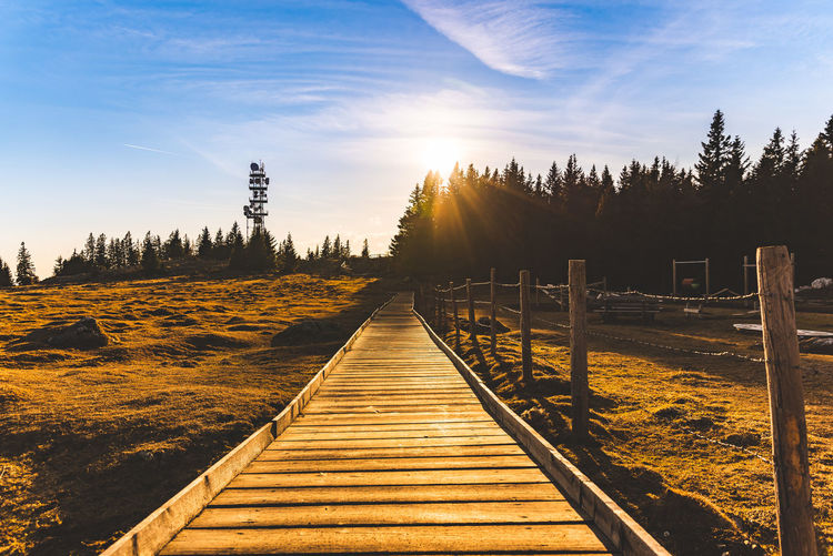 Boardwalk amidst trees against sky during sunset