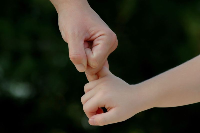 Close-Up Of Adult And Child Holding Hands