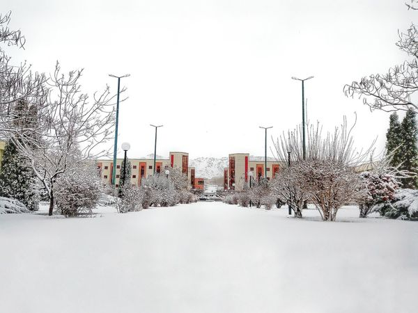 Snow Snowing Sky Beauty In Nature Winter Day Outdoors Trees Tree Snow ❄️ Snow ❄snow❄ ❄Snow Day❄ Snowy Days... Snow Day IASBS Zanjan Iran You Must See Iran You Must See Zanjan