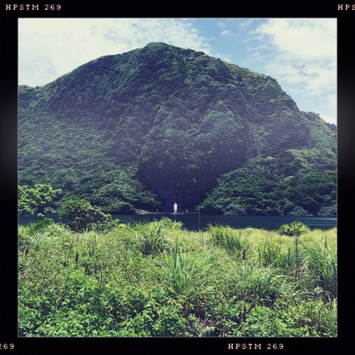 Adventure Buddism Day Forest Garageimg Green Hill Landscape Mountain Nature Outdoors Taiwan