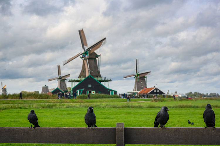 Traditional windmill in a farm against sky
