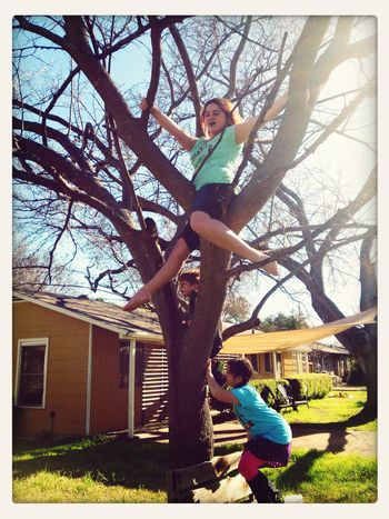 my kids favorite place to.be....up in a tree! Family Matters What Does Freedom Mean To You? Atxkids Austinchronicles