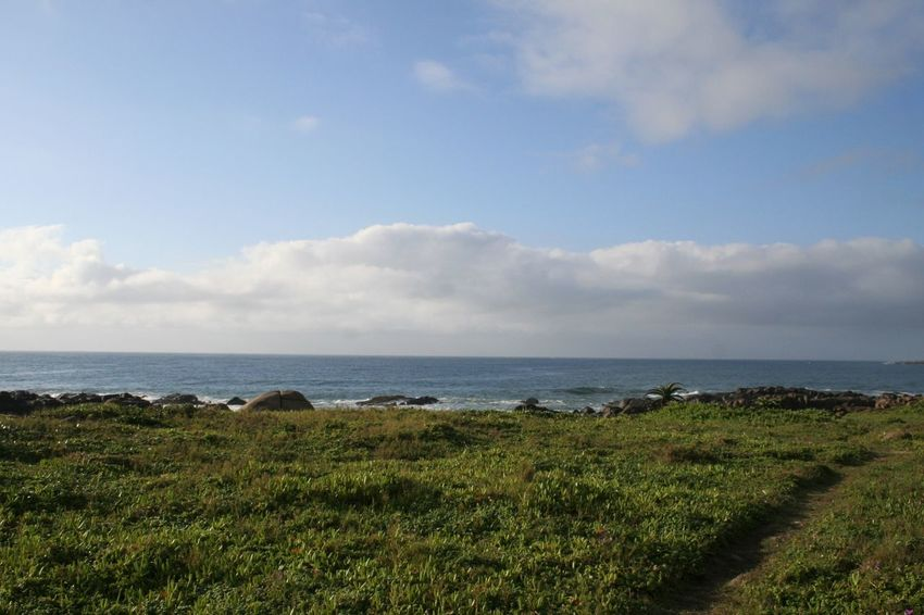 Grass Horizon Over Water KwaZulu-Natal Coast Landscape Nature No People Outdoors Scenics Sea Sky Tranquility Water
