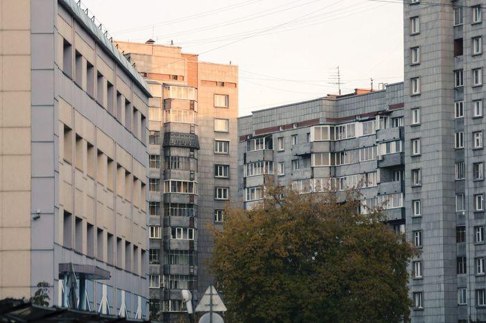 Buildings Windows Tree Novosibirsk Novonikolayevsk Siberia Russia
