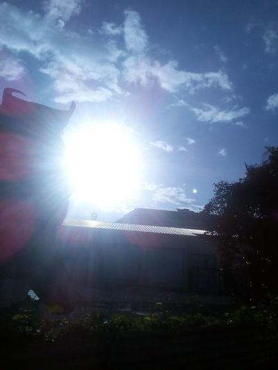 ua he'e o te ra i ni'a papeete Paku-Motu Colour Your Horizn Cloud - Sky Outdoors Sky No People Night Nature