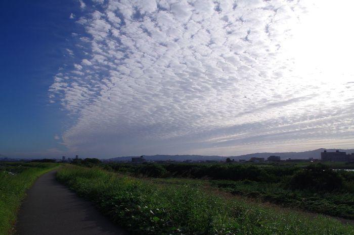 Sky 淀川 Cloud - Sky