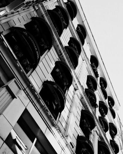 City Modern