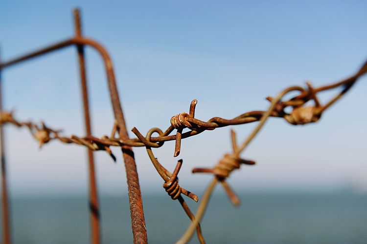 Close-up of barbed wire against clear blue sky