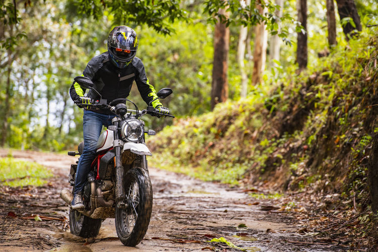 Man riding bicycle on dirt road in forest
