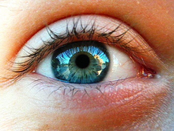 Human Eye One Person Eyeball Looking At Camera The Week On EyeEm EyeEmNewHere