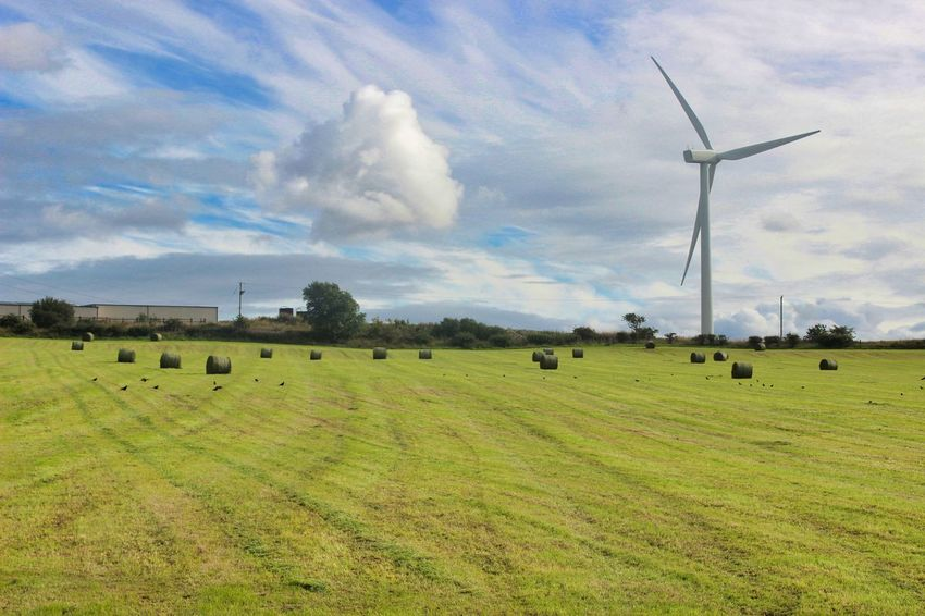 Farmland Farm Life Farmer Landscape Low Angle View Landscape_photography Wind Turbine Wind Power Rural Scene Windmill Technology Tree Alternative Energy Agriculture Fuel And Power Generation Field Storm Cloud Traditional Windmill Dramatic Sky Sky Only