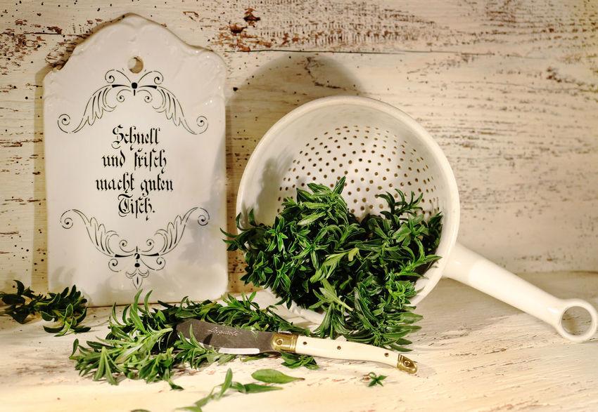 Herb Herbs Vintage Kitvhen Nostalgia Wood Table Plant Country Life Savory Food Summer Savory