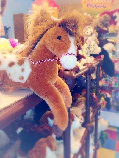 Take me Home Horse Stuffed Animal Friend Fuzzy Toystore