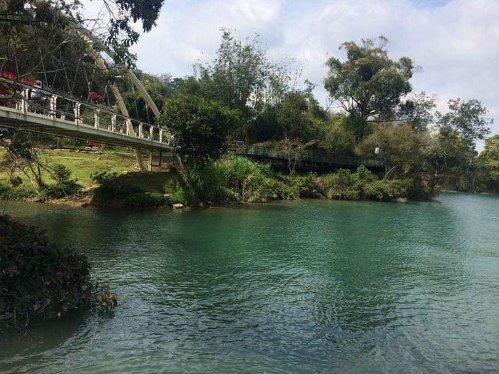 日月潭環湖步道 Tree Plant Water Nature Sky Beauty In Nature Day This Is Natural Beauty