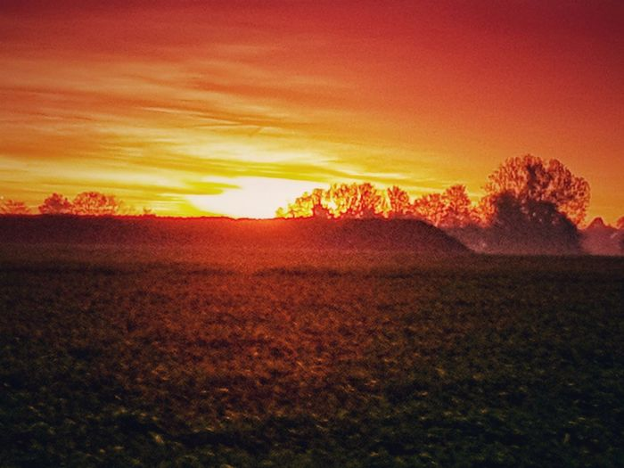 https://youtu.be/9dCdqvBEzMY Orange Sky Fog Foggy Morning Spazieren Und Fotografieren Sunstalker Today's Pic Love It Nature EyeEm Best Shots EyeEm Nature Lover Beauty In Nature Multi Colored Rural Scene Autumn Agriculture Red Leaf Sunlight Horizon Streaming Atmospheric Mood Sunbeam Shining Sky Only Sun Silhouette Romantic Sky This Is Strength EyeEmNewHere
