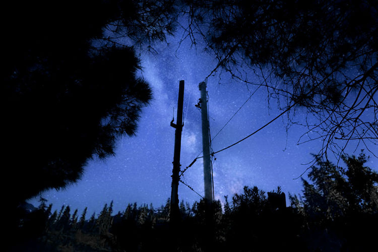 Tree Plant Sky Low Angle View Technology No People Silhouette Dusk Nature Connection Night Growth Outdoors Fuel And Power Generation Electricity Pylon Communication Cable Forest Tranquility Tall - High Electricity  Power Supply