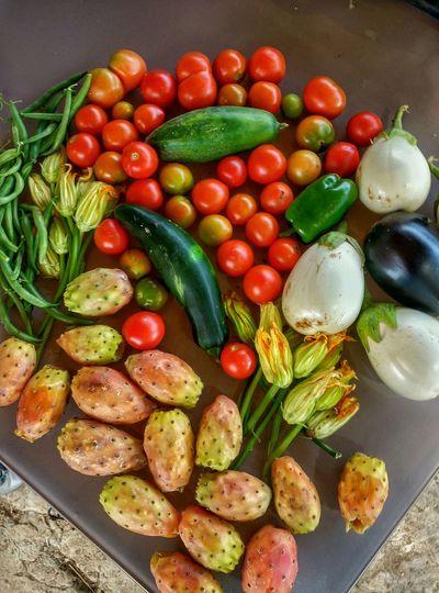 Vegetables Verdura Fichi D'india Pomodorini Zucchine Verdure Fiori Di Zucca Melanzane Ma non sono vegetariano... Colour Of Life Beautifully Organized