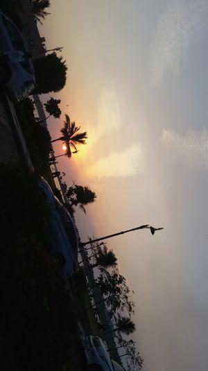 Sunset 🌇 Sun