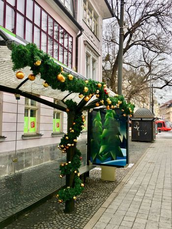 An ornate bus stop.. Tram Stop Bus Stop Bus Stop, Candid Photography Building Exterior Architecture Built Structure Tree City Outdoors Christmas Christmas Decoration Branch No People The Graphic City