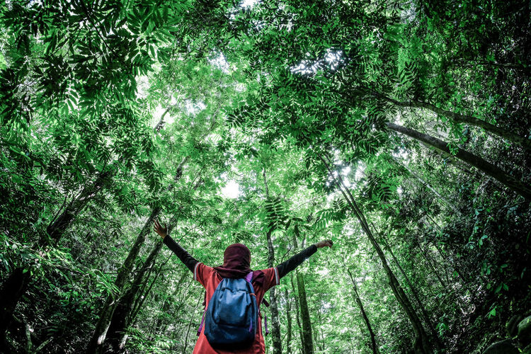 Low Angle View Of Young Woman With Arms Outstretched Standing In Forest