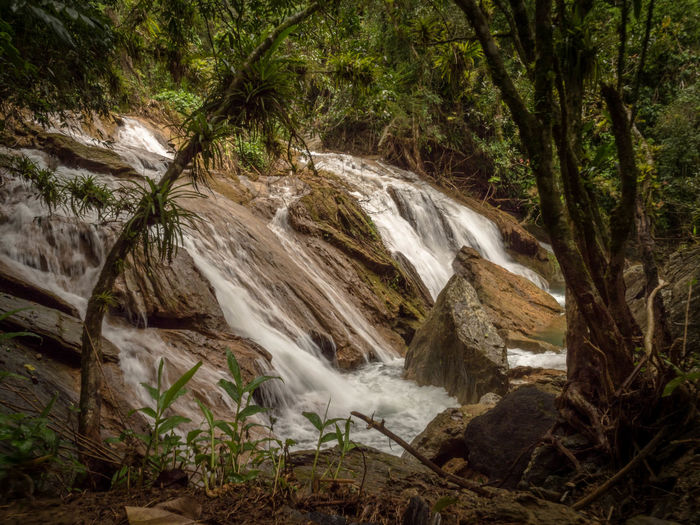 Cuba Waterfall Motion Forest Water Tree Flowing Water Rock Scenics - Nature Land Plant Environment Long Exposure Rock - Object Solid Nature Blurred Motion Beauty In Nature Flowing Day No People Rainforest Outdoors Falling Water Stream - Flowing Water Tropical Tree