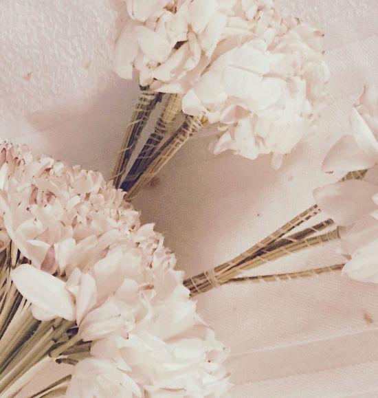 Mahmoum Jasmine Flower Tunisia Smellsgood