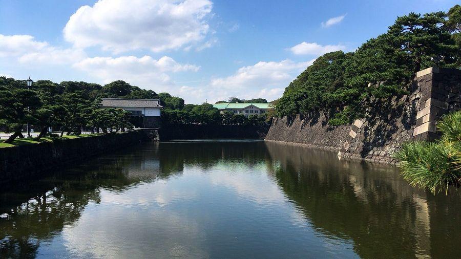 皇居 Water Plant Sky Reflection Cloud - Sky Tree Lake