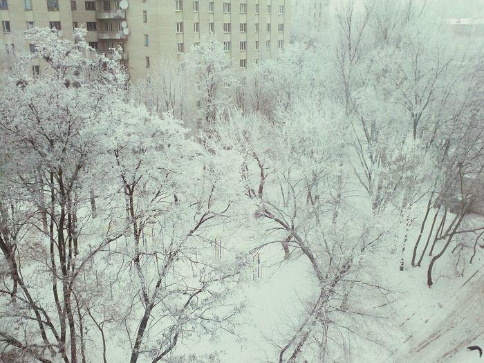красота))
