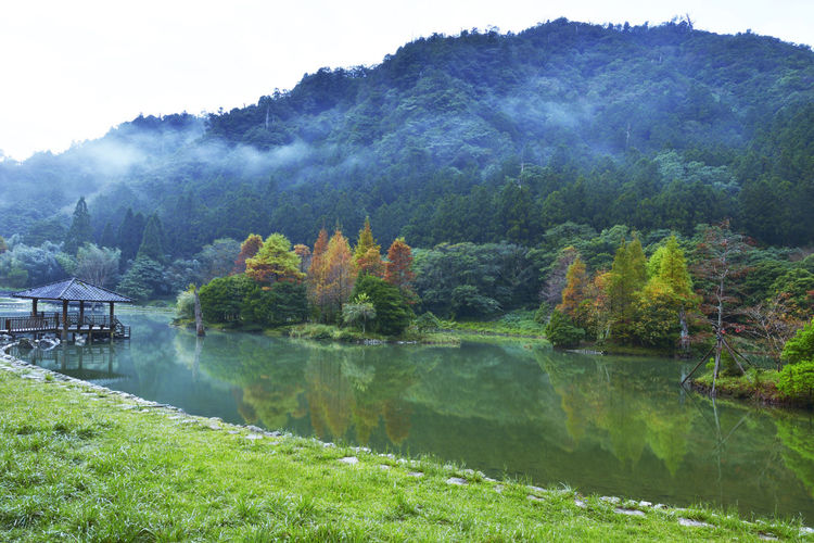 Beautiful scenery of forest Mountain View and lake in autumn Tree Plant Water Reflection Lake Scenics - Nature Beauty In Nature Tranquility Nature Tranquil Scene Day Mountain No People Non-urban Scene Growth Sky Fog Land Outdoors Autumn Autumn colors Autumn Leaves Mountain View Woods Woods And Color Grass Grassland Forest Pine Tree Pine Tree Forest Quiet Quiet Place  Comfortable Comfortable Place Needles Scenery Attractions Landscape