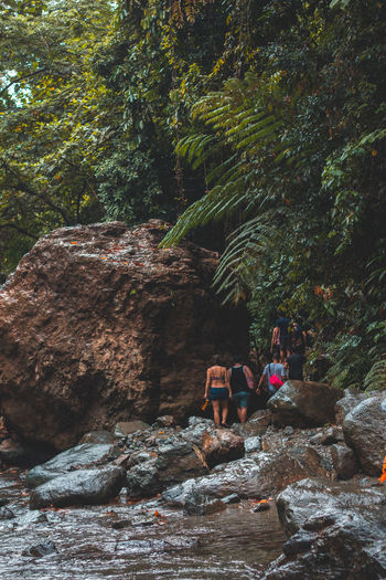 People sitting on rock in forest