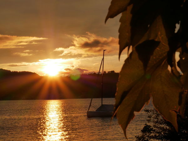 Attersee Attersee Mit Family Österreich Seen Urlaubsfoto EyEmReady EyeEmNewHere Segelboote Sailing Boat Beautiful Nature Beauty In Nature Cloud - Sky Day Nature Nautical Vessel No People Outdoors Scenics Sea Sky Sun Sunlight Sunset Tranquil Scene Tranquility Tree Water Leaf