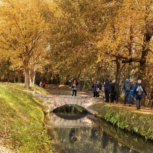 People in park by lake during autumn