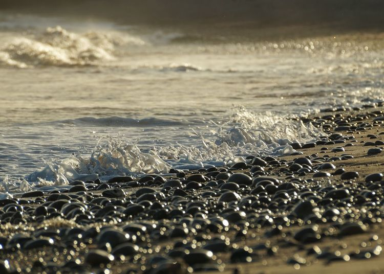 Sea Water Wave Surf Beach Motion Shore Scenics Nature Beauty In Nature Selective Focus Seascape Dusk Horizon Over Water Tranquil Scene Rushing Majestic Tranquility Surface Level Tide Budleigh Salterton Devon Bokeh Bokehlicious No People
