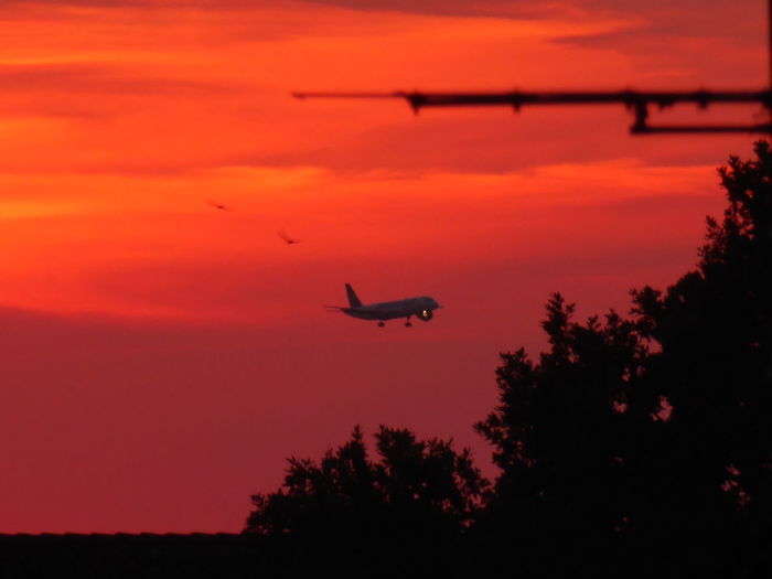 Flight Into Sundown😍 guten Fluuuug!! Sunset Silhouette Flying Mode Of Transport Airplane Beauty In Nature My Soul's Language Is📷 Thankful🦄 You Raise Me Up✨ ForTheLoveOfPhotography For My Friends 😍😘🎁 Summertime 🌞 Tranquility view from my window now Sehnsucht Fernweh Sundown, Nightfall, Close Of Day, Twilight, Dusk, Evening; Sunse