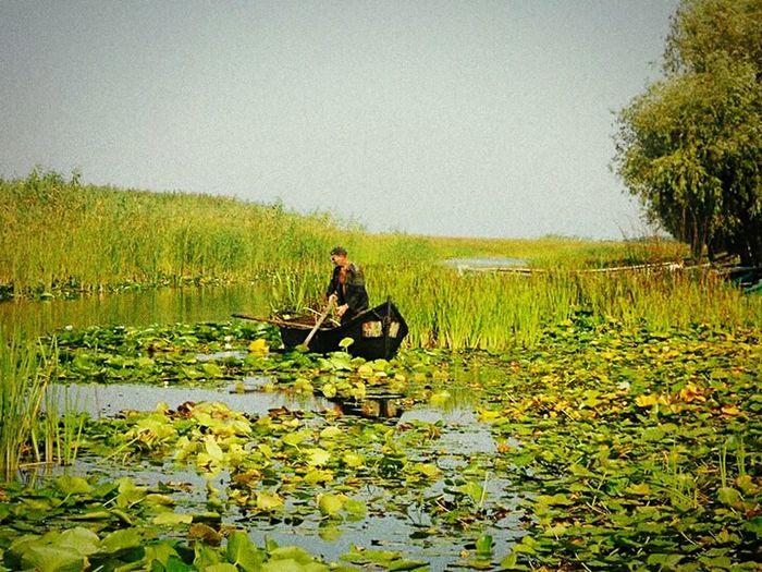 Fisherman Fishing Boat Relaxing Enjoying Life