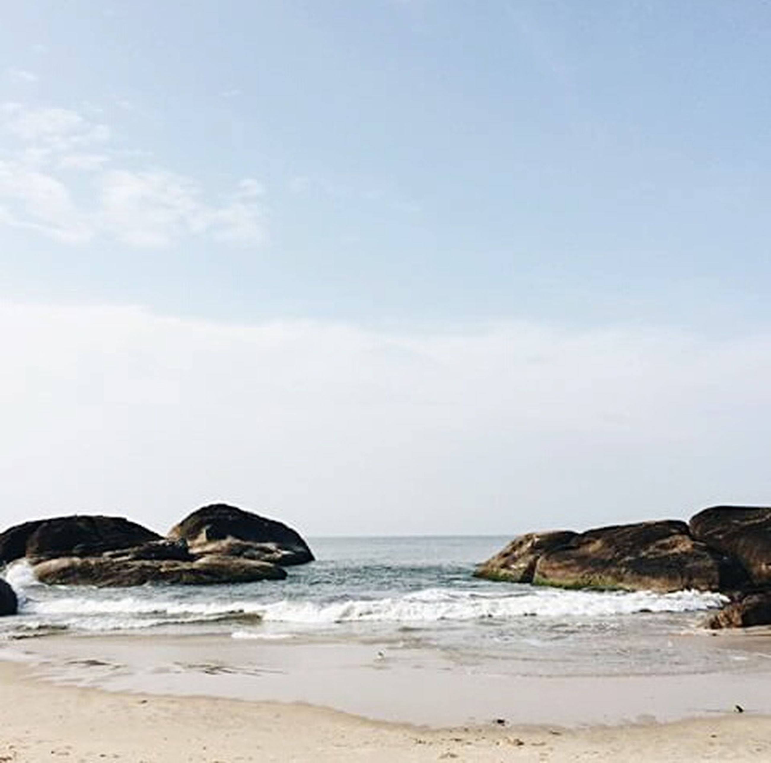 beach, sea, sand, shore, water, sky, horizon over water, tranquility, nature, tranquil scene, scenics, beauty in nature, animal themes, rock - object, one animal, relaxation, day, wave, wildlife, outdoors