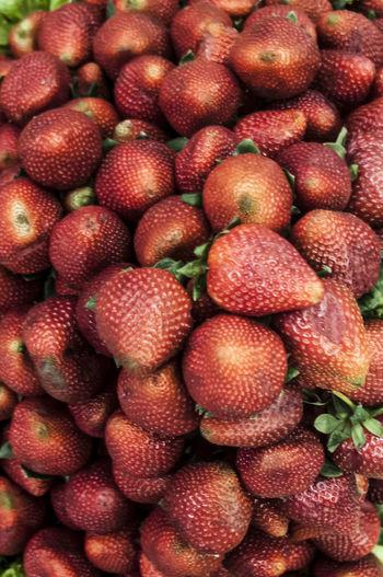 Feira Livre Food Freshness Fruit Fruta Mercadomunicipal Morangos Natural Natural Pattern No People Organic Red Repetition Sao Paulo - Brazil Shopping Strawberries Veggie