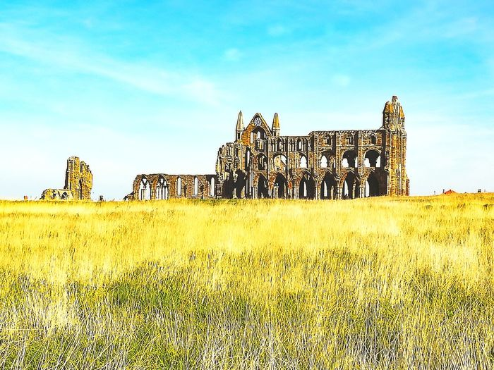 North Yorkshire Medievil Abbey Dracula's Castle Whitby Abbey Whitby King - Royal Person Rural Scene Sky Grass Scenics Tranquil Scene Tranquility Countryside Coast Remote Calm Idyllic Non-urban Scene
