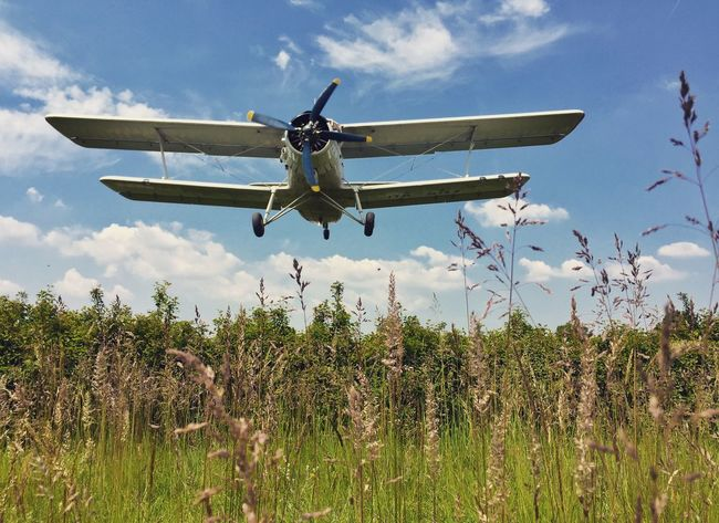 Aircraft Airplane Beauty In Nature Blue Cloud Cloud - Sky Field Grass Grassy Landing Nature No People Non-urban Scene Sky Speed