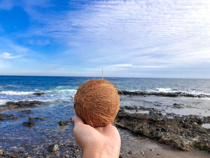 Beach Coconut