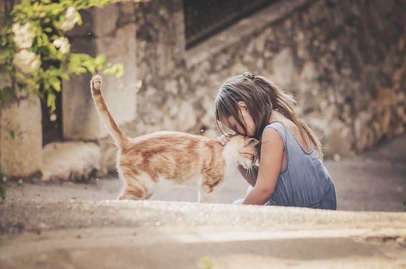 Cute girl kissing cat sitting outdoors